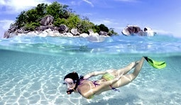 snorkeling and scuba diving on koh tao